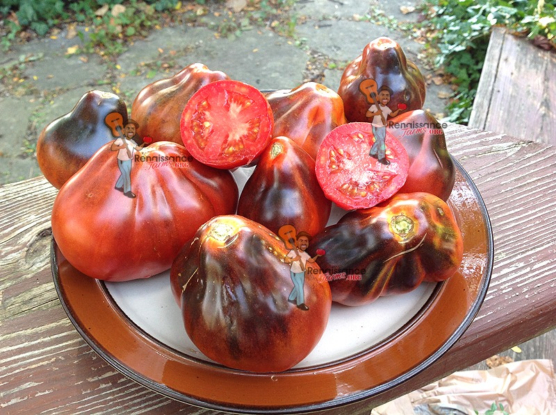 BluePear Tomato Seeds