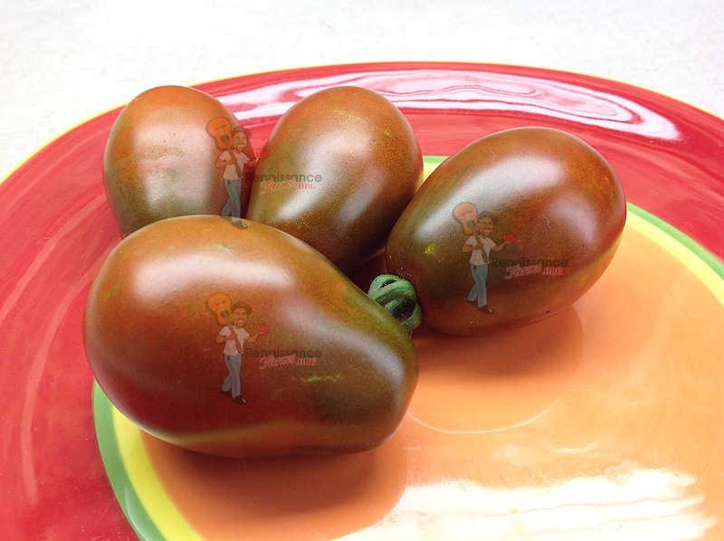how to grow black tomatoes