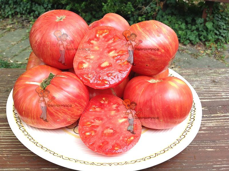 Dwarf Firebird Sweet Tomato