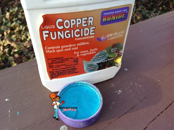 2 Effective Fungicides For Organic Tomato Gardening